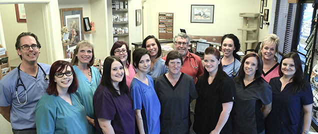 Lookout Mountain Veterinary Team
